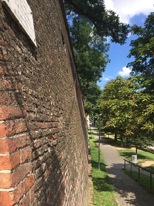zid caramida Sibiu
